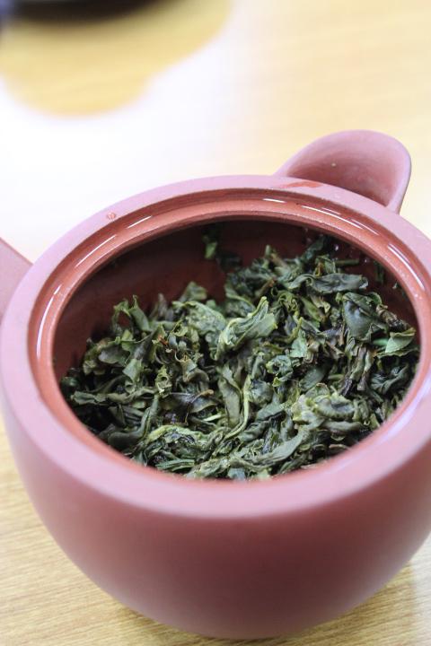 檜山茶一煎めの茶殻