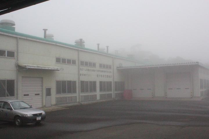 種子島茶生産組合