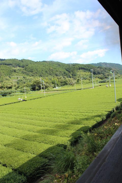 大井川鉄道からの眺め4