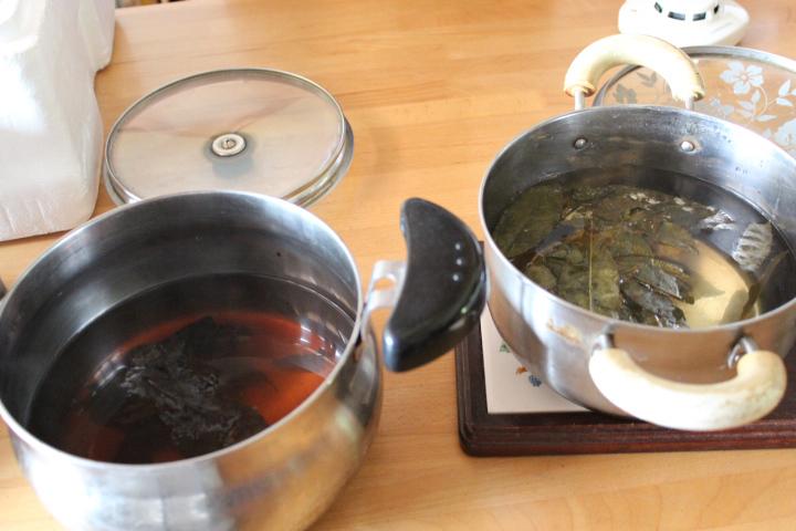 2018.9.1.黒いカビと檜原黒茶 煮出した後