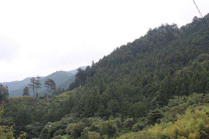 檜原村2018.9.1.
