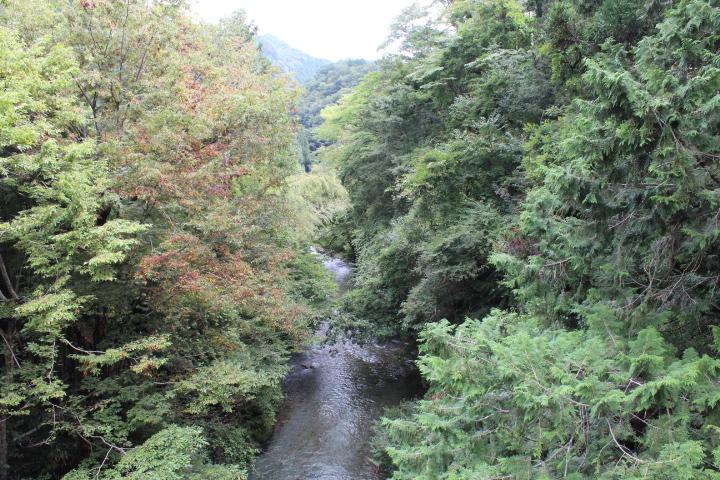南秋川橋の上から2