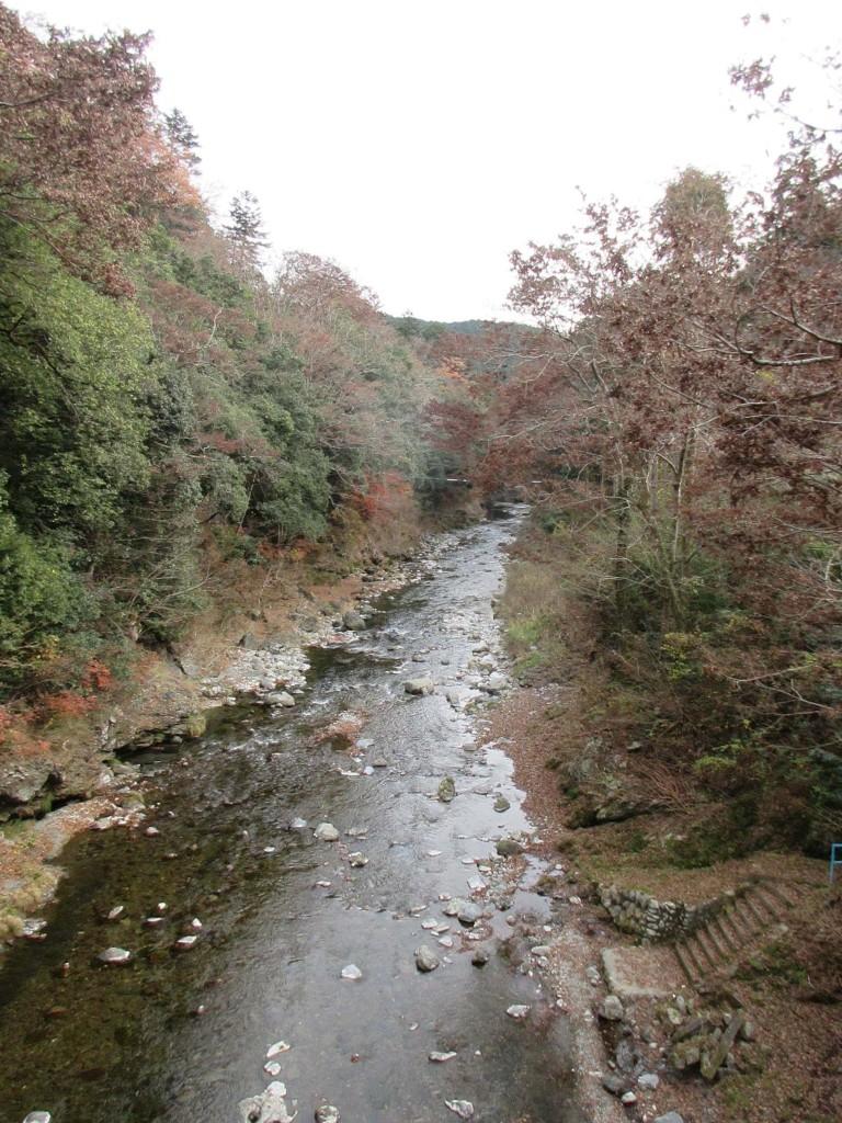 上日向橋から下流を望む 12月