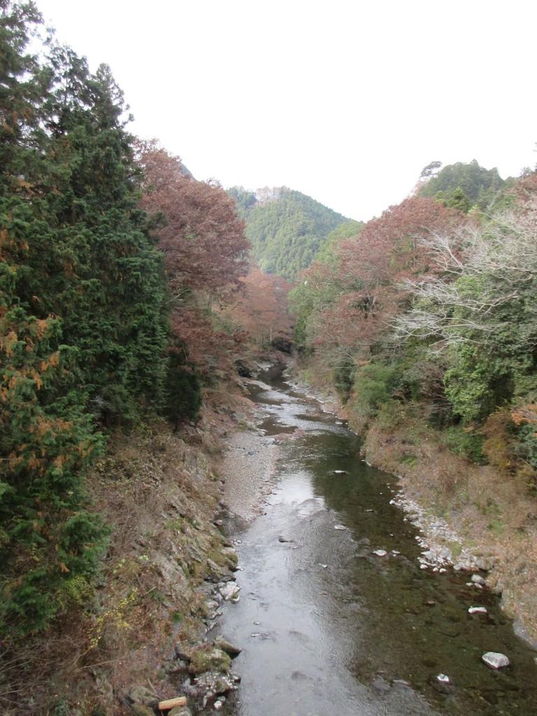 上日向橋から上流を望む 12月
