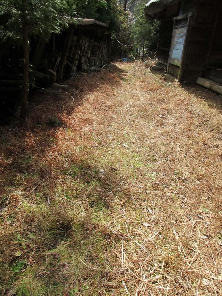 旧曽我部邸の庭