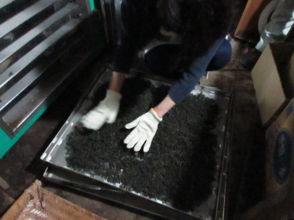 焙煎乾燥機へ 2019.5.16