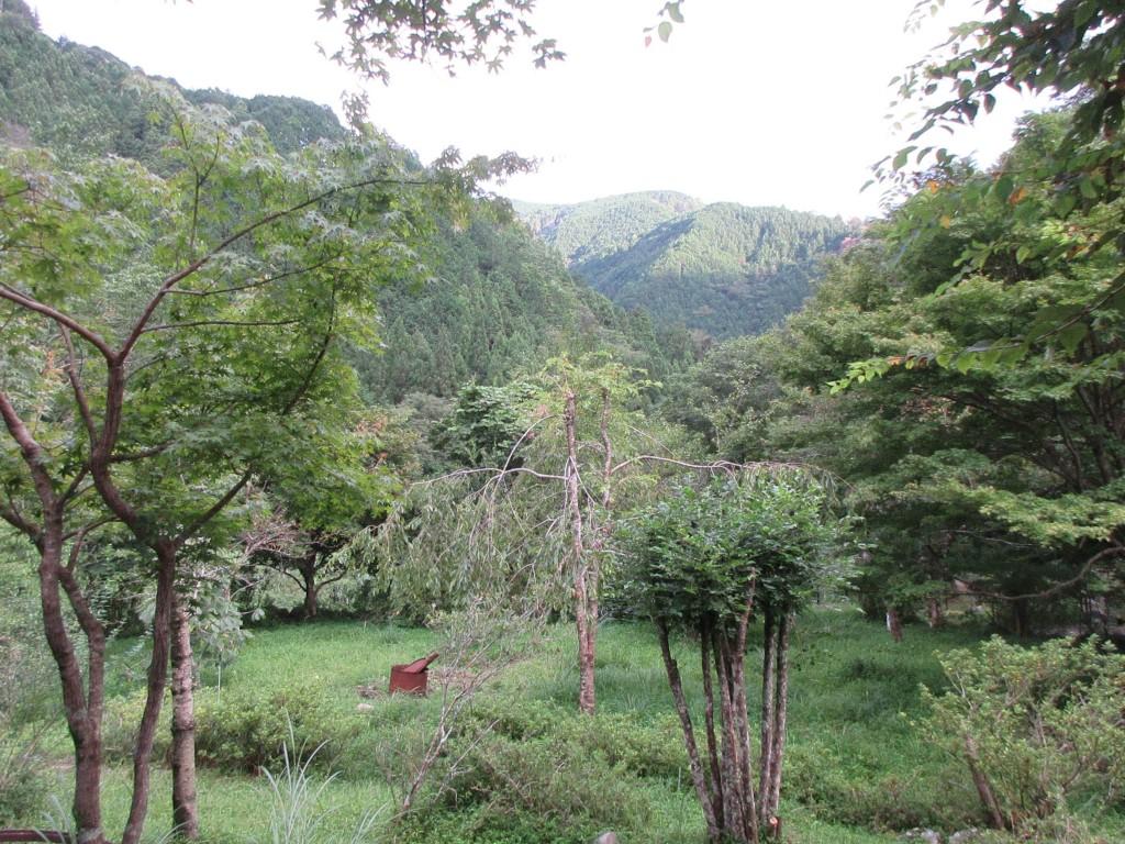 斉藤雅子さん宅からの眺め