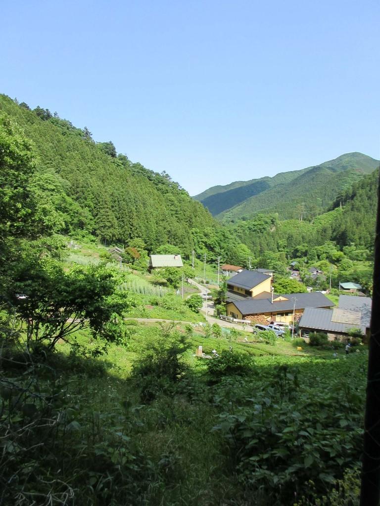 2020.5.24 檜原村